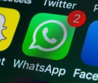 politica whatsapp